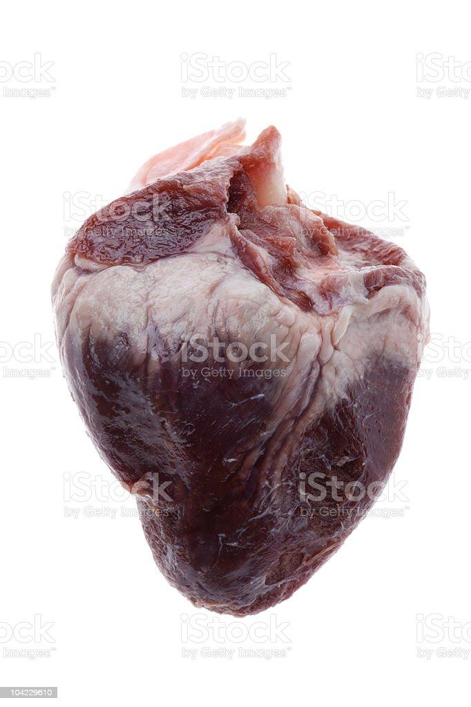 Beef heart stock photo