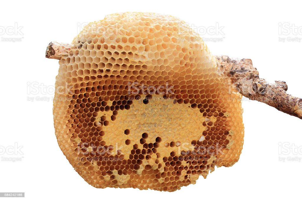Beehive closeup. stock photo