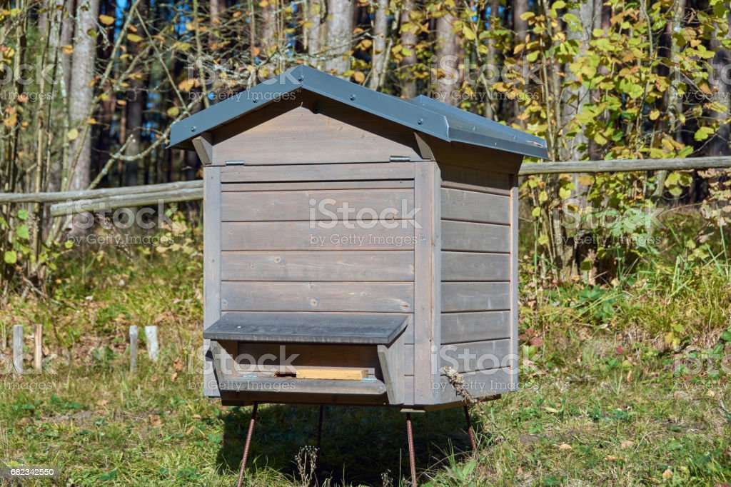 A beehive in natural surrounding stock photo