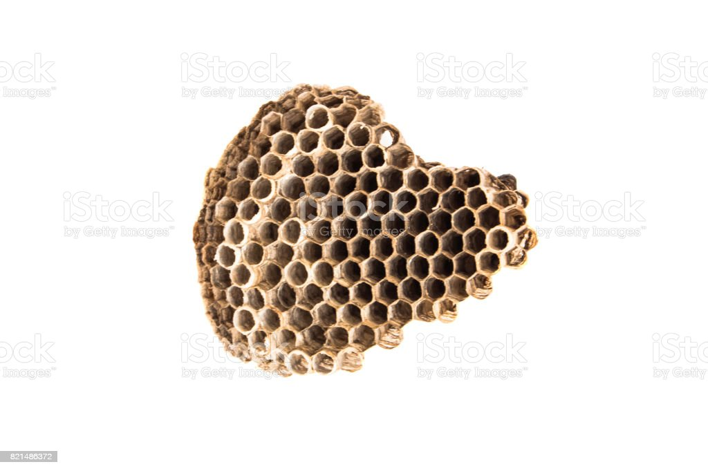 beehive like africa map on white background stock photo