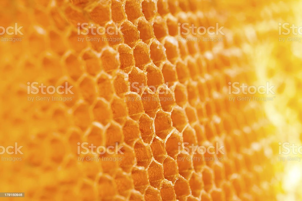 beehive royalty-free stock photo