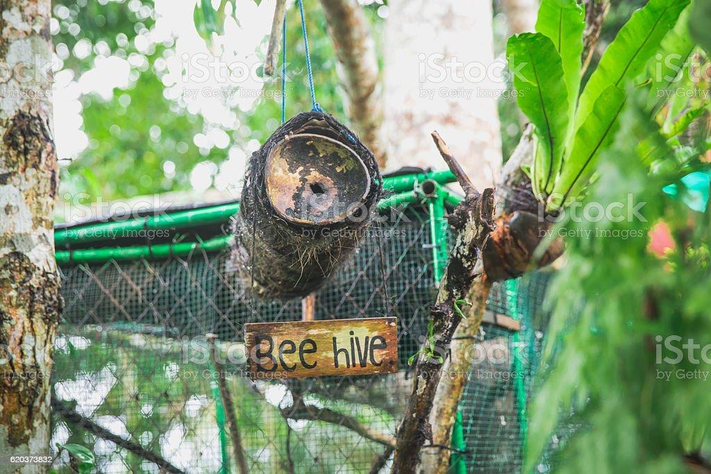 Beehive Sign foto de stock royalty-free
