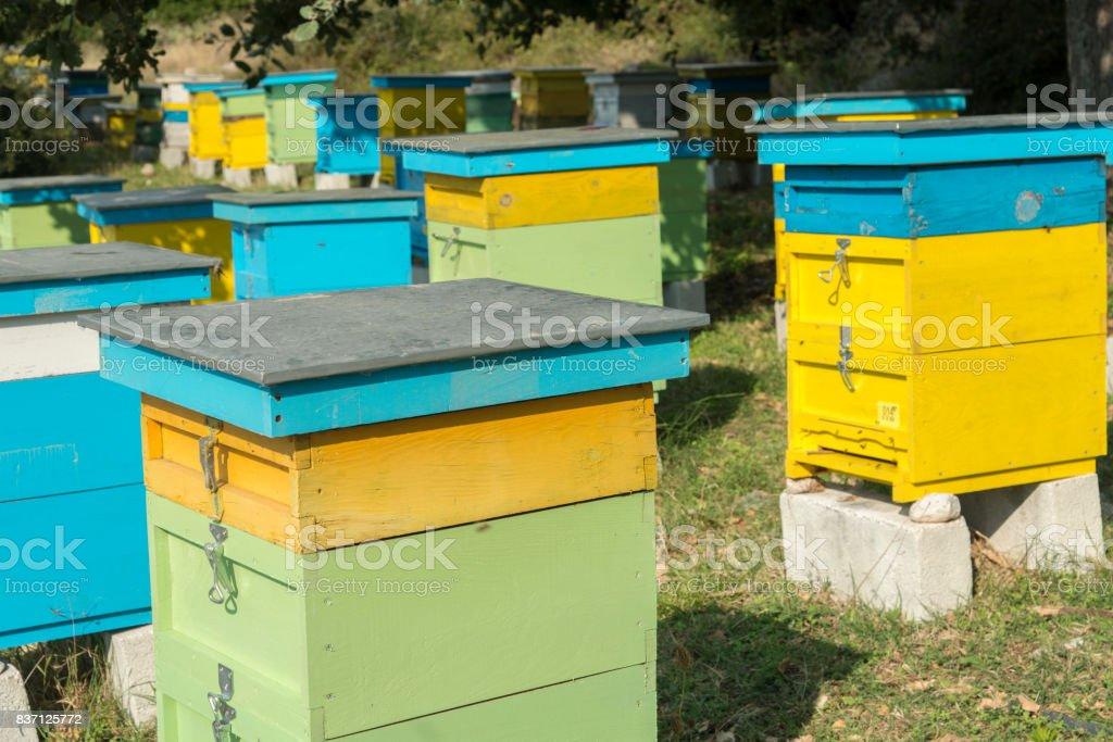 Beehive,Albania stock photo