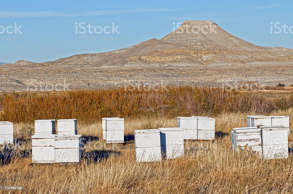 Beehives and butte in Wyoming royalty-free stock photo