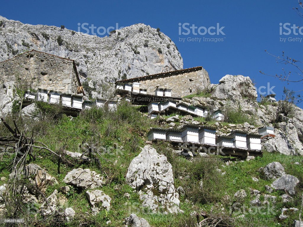 Beehives in Picos de Europa, North Spain royalty-free stock photo