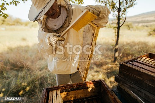 istock Beekeeper checking his beehives 1189332864