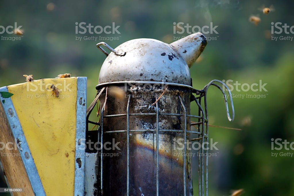 Beekeeper or Apiarist's  Smoker stock photo