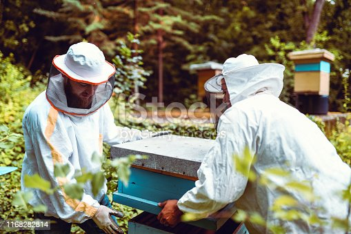 Beekeeping Is Hard Work