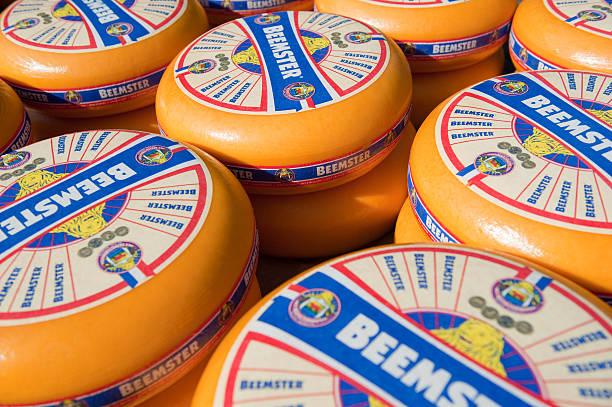 beemster cheeses - beemster stockfoto's en -beelden