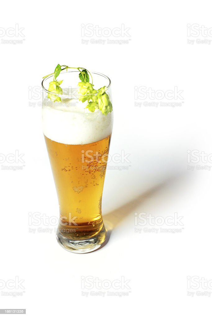 beer and hops royalty-free stock photo