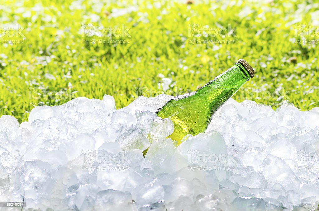 beer and ice, out of focus grass with an intense royalty-free stock photo