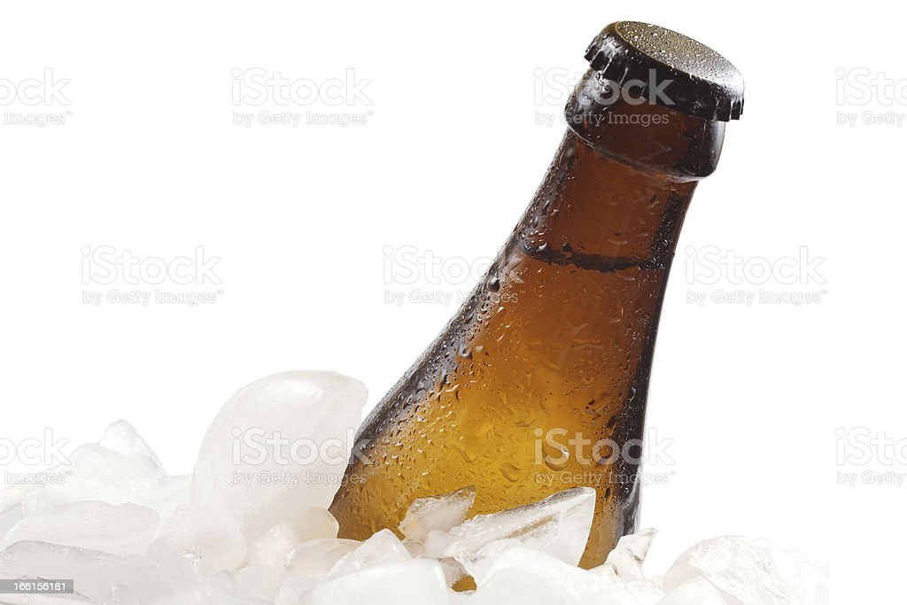 Beer and ice royalty-free stock photo