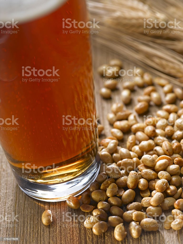 Beer and Nuts royalty-free stock photo