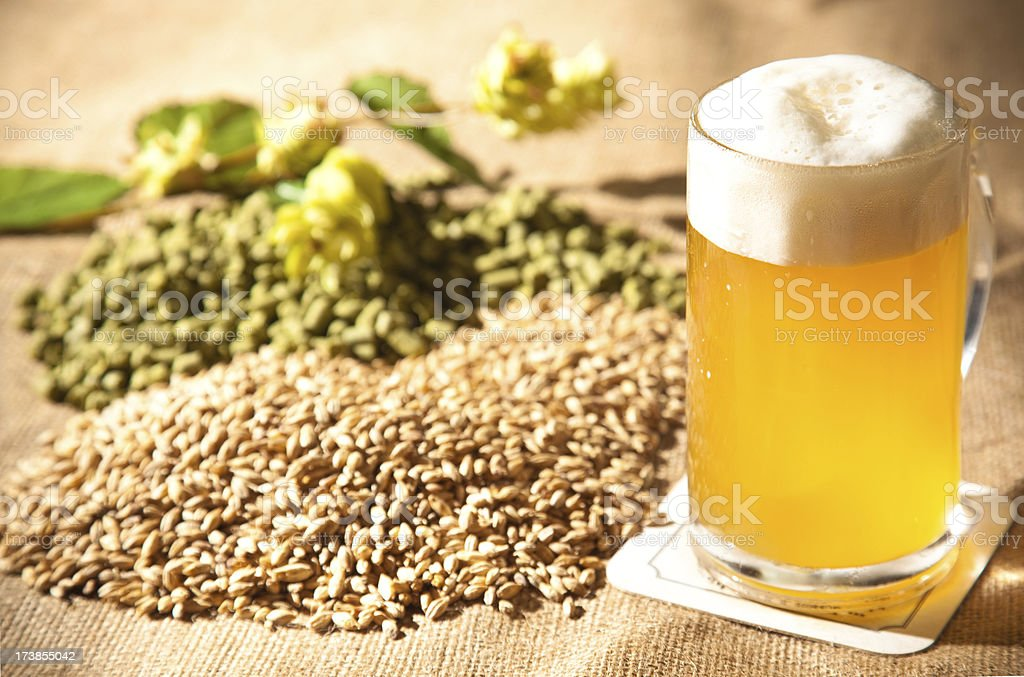 beer and the raw materials for it stock photo