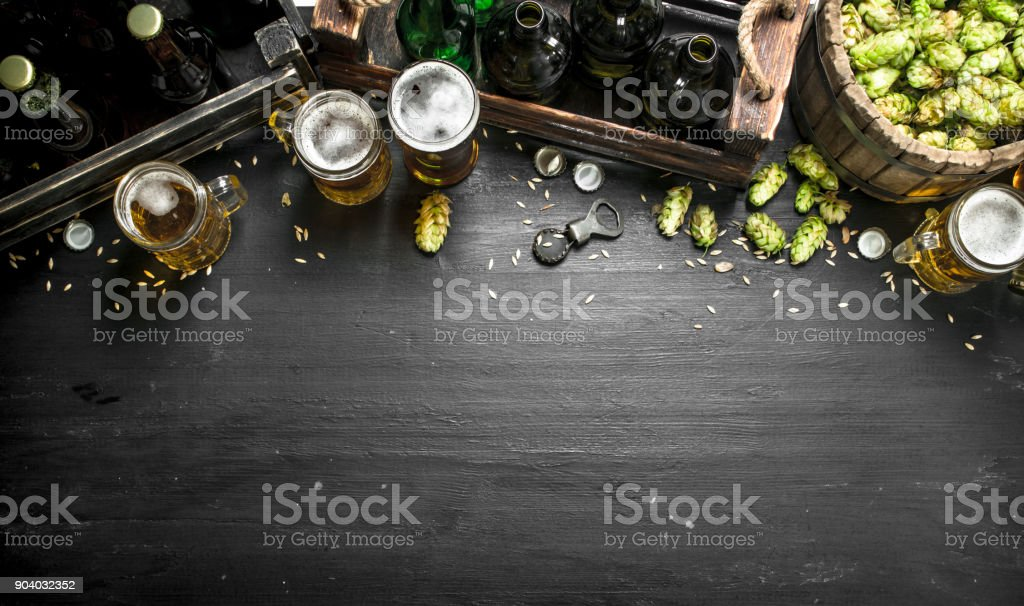 Beer background. Fresh beer and ingredients. stock photo