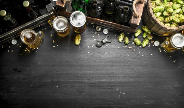 Beer background. Fresh beer and ingredients. stock photo