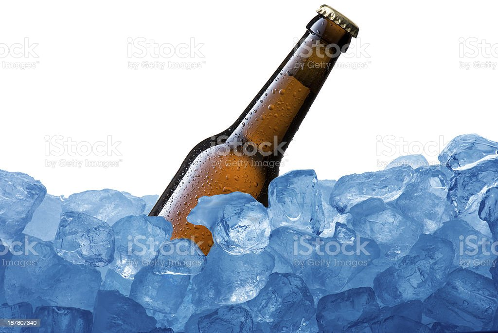 Beer Bottle on Ice Cube royalty-free stock photo