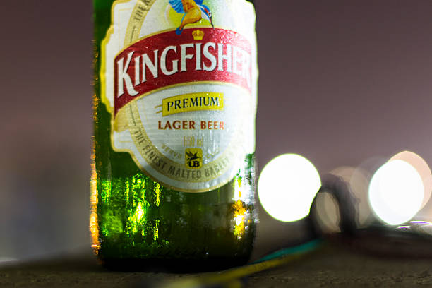 bouteille de bière - martin pêcheur photos et images de collection