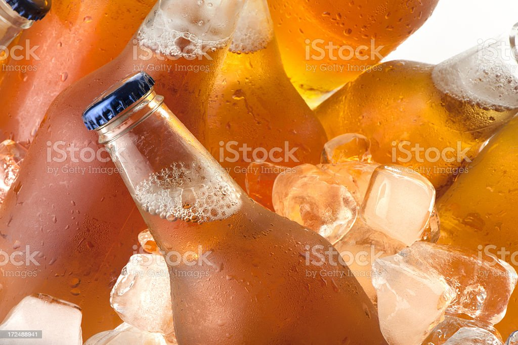 Beer bottles in an ice bucket royalty-free stock photo