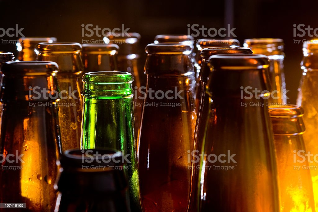 Beer Bottles stock photo