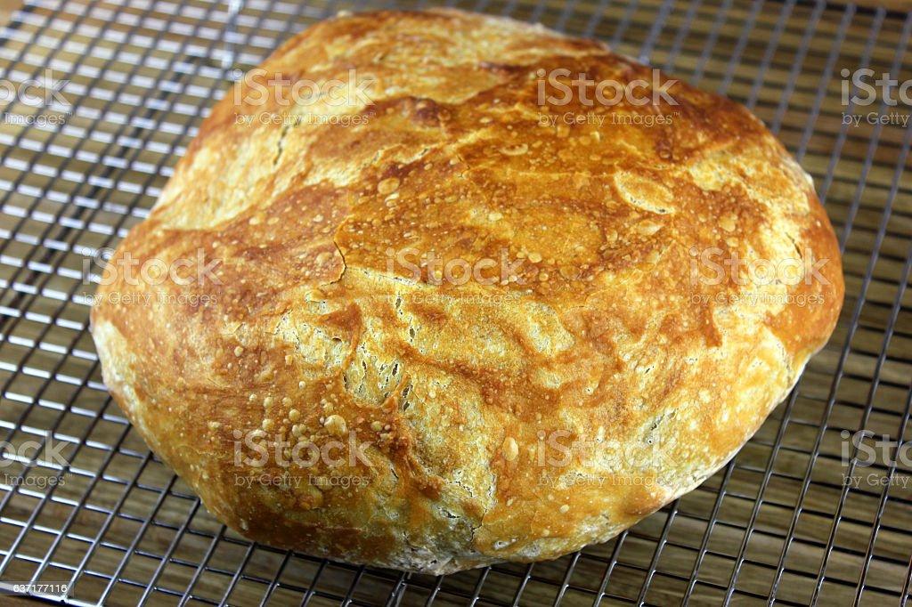Beer Bread stock photo