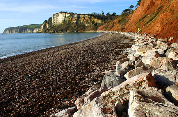 Beer cliffs from Seaton Beach stock photo