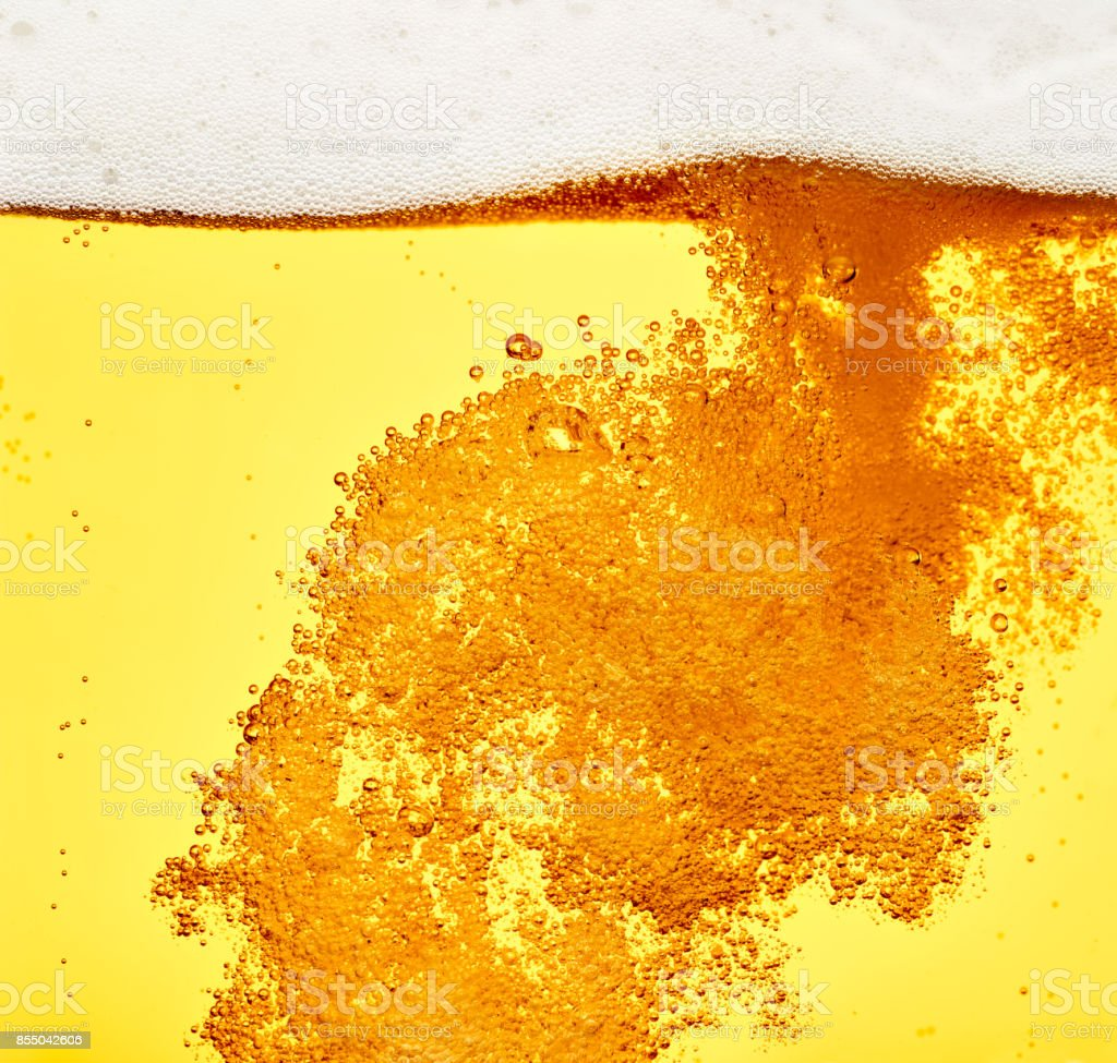 beer closeup alcohol drink beverage stock photo