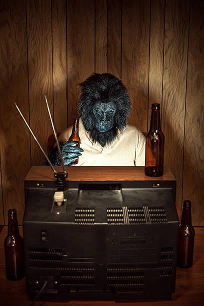 bier trinken-fernsehern. gorilla - bier kostüm stock-fotos und bilder