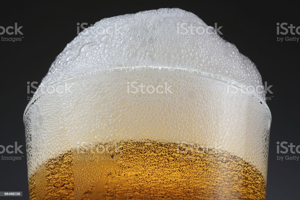 beer foam crest royalty-free stock photo