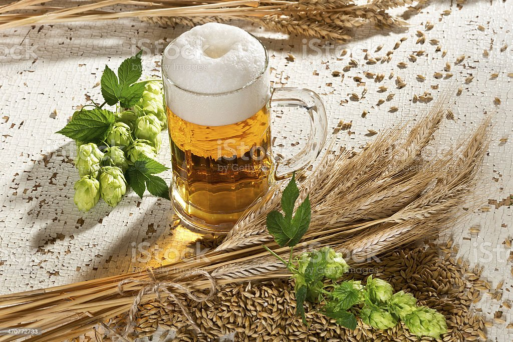 Beer Glass And Hops royalty-free stock photo