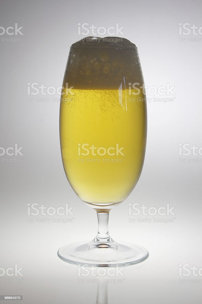Beer goblet in backlight royalty-free stock photo