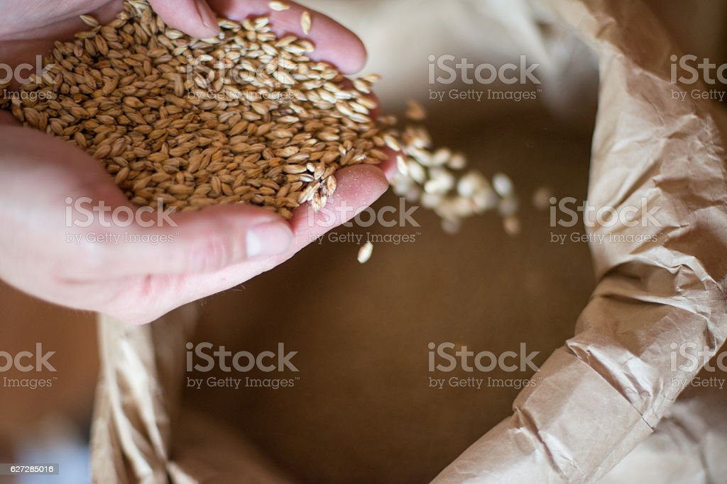Beer Grains stock photo