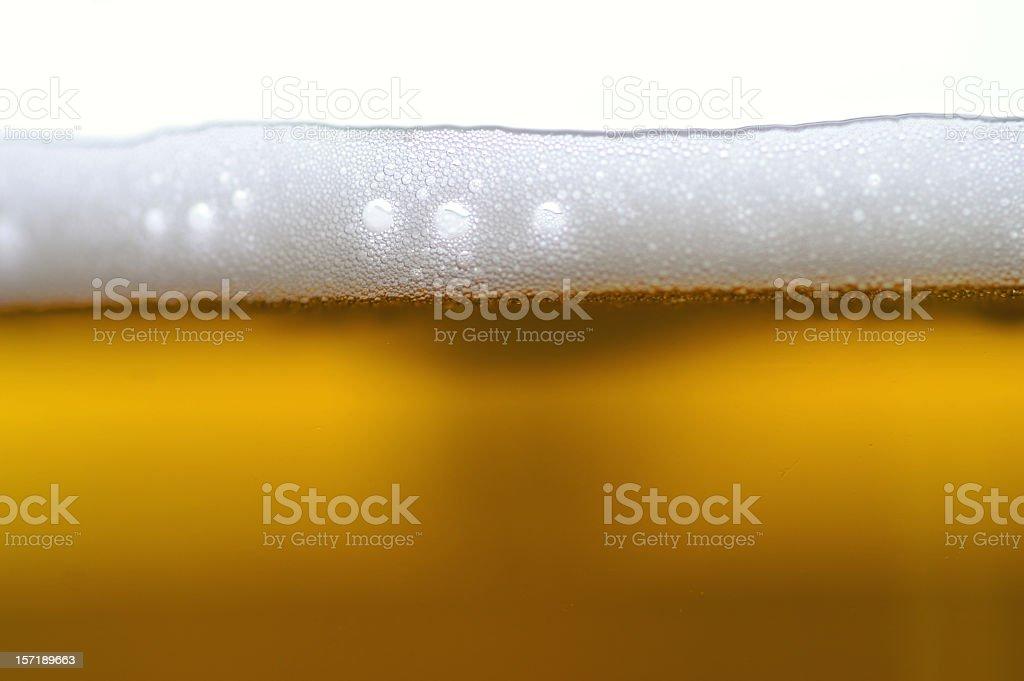 beer head royalty-free stock photo