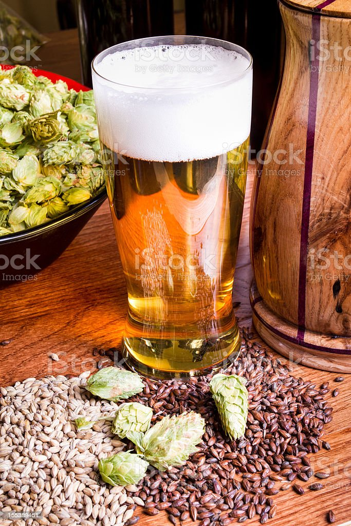 Beer, Hops and Barley stock photo
