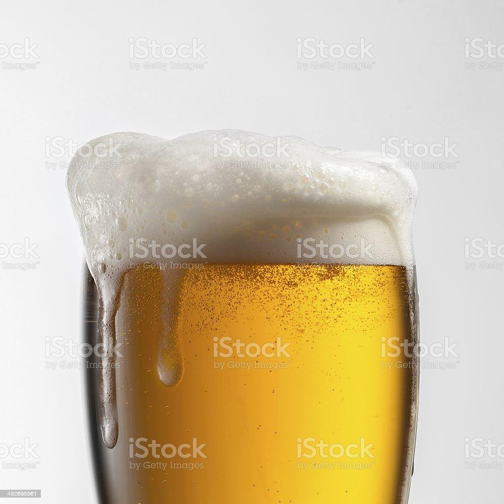 Bier in Glas, isoliert auf weißem Hintergrund – Foto