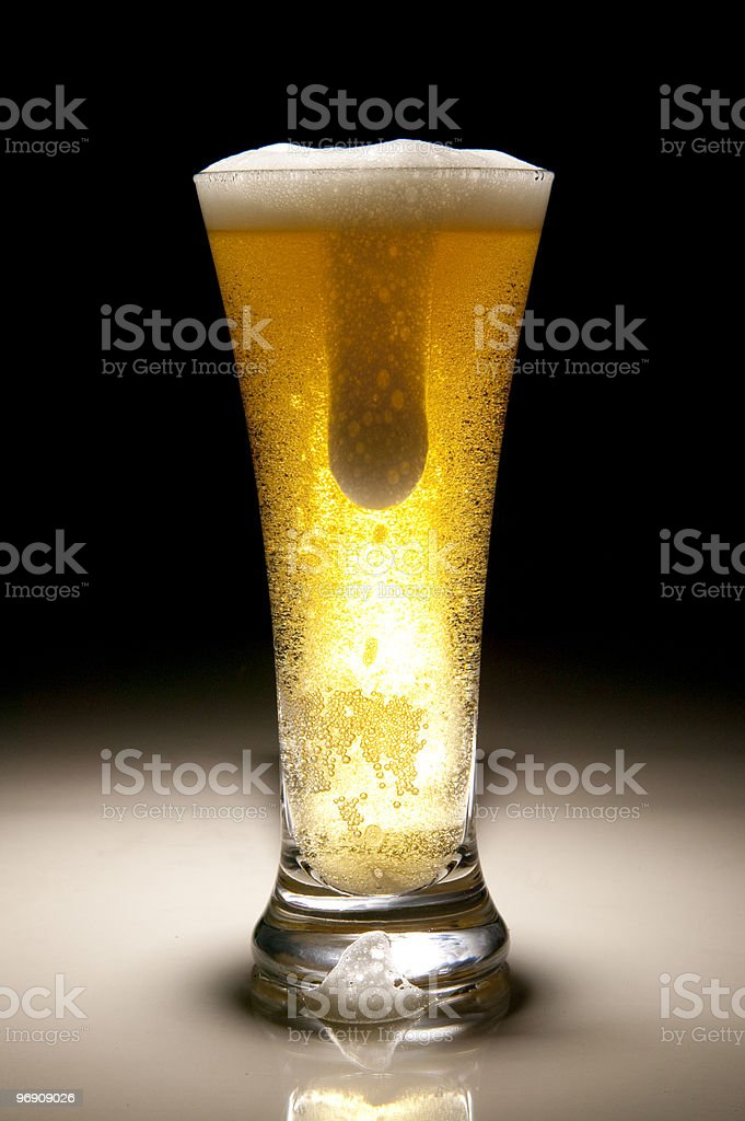 Beer in glass royalty-free stock photo