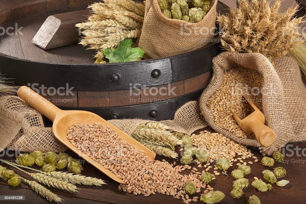 beer ingredients stock photo