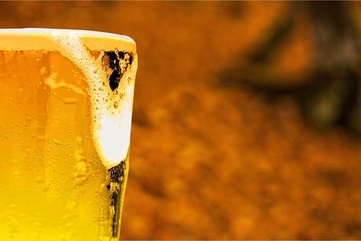 Foto de Cerveja e mais fotos de stock de Ale