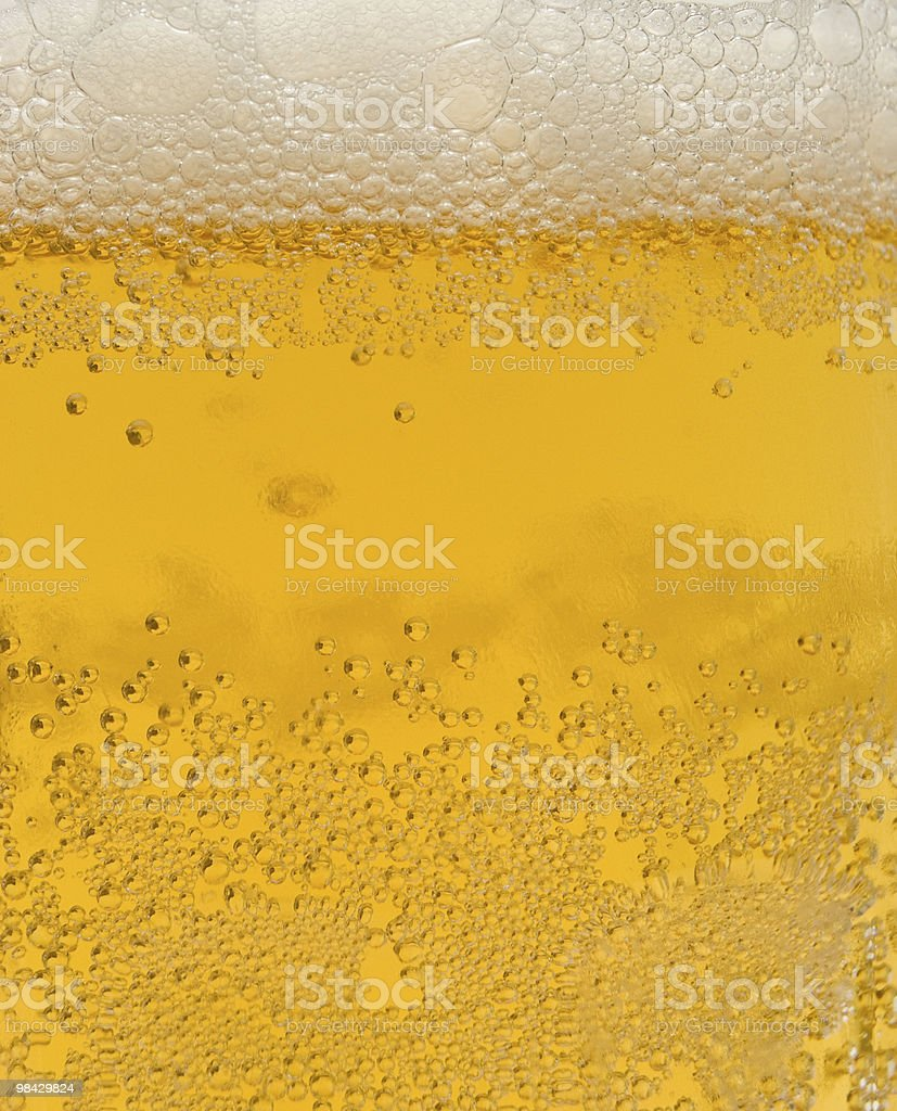 Birra foto stock royalty-free