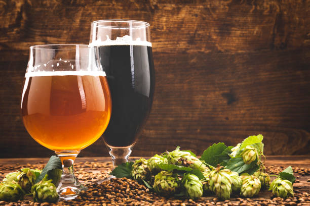 beer surrounded by hops on wooden background stock photo