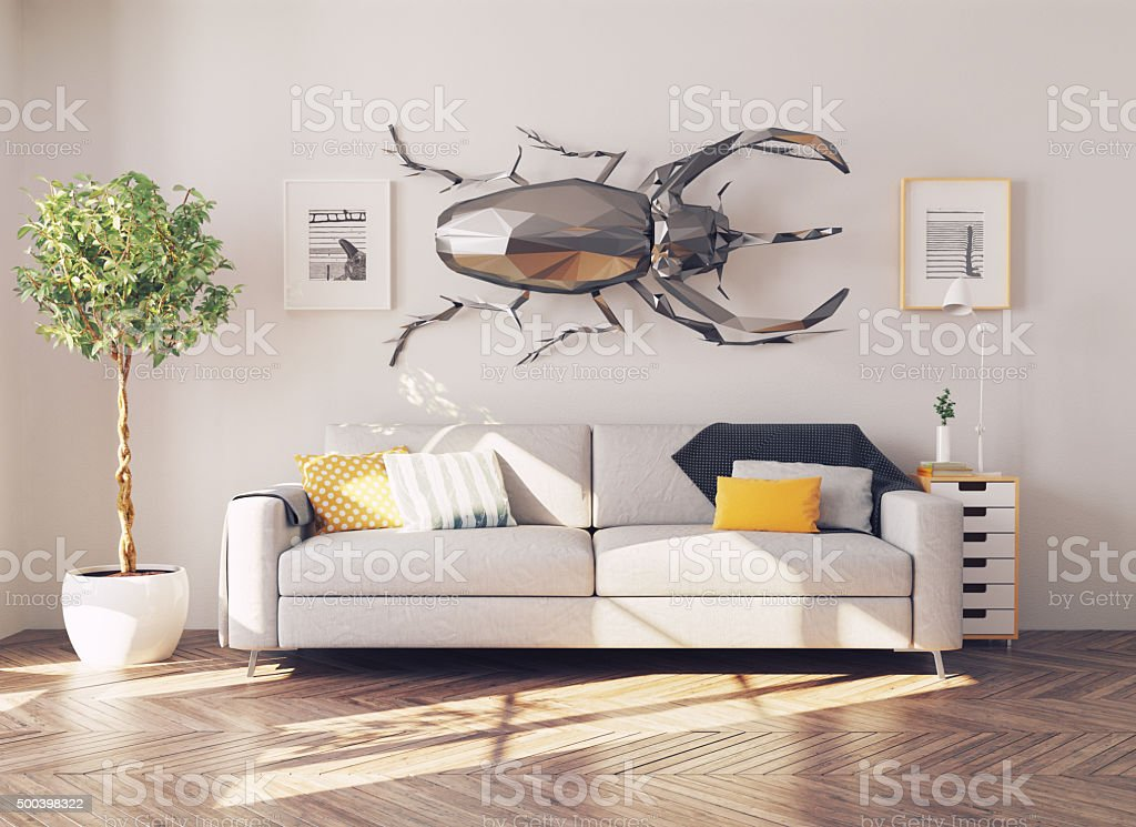 beetle on the wall stock photo