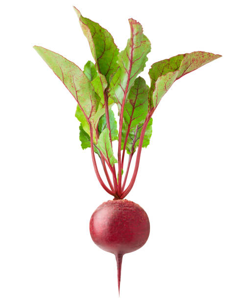 beetroot isolated on white background, clipping path, full depth of field beetroot isolated on white background, clipping path, full depth of field beet stock pictures, royalty-free photos & images