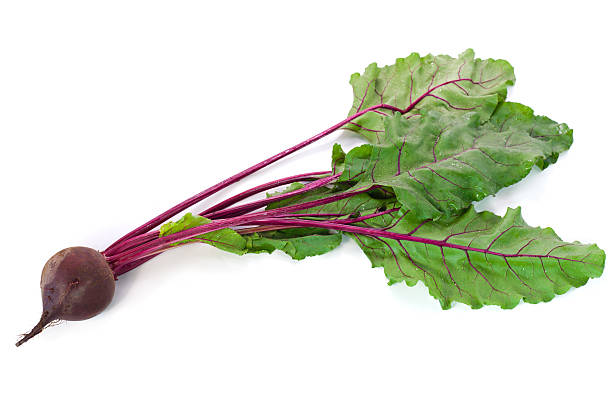 Beetroot on a white background stock photo