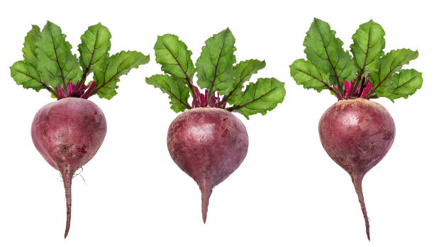 Beetroot with leaves isolated Beetroot with leaves isolated on white beet stock pictures, royalty-free photos & images