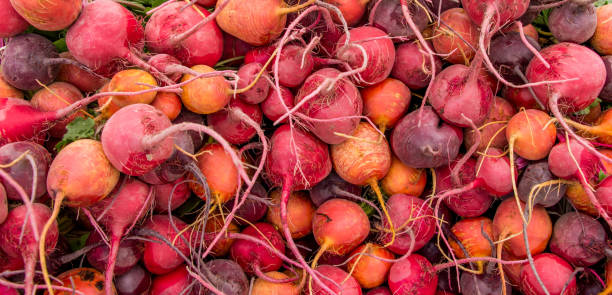Beets Textural Background stock photo