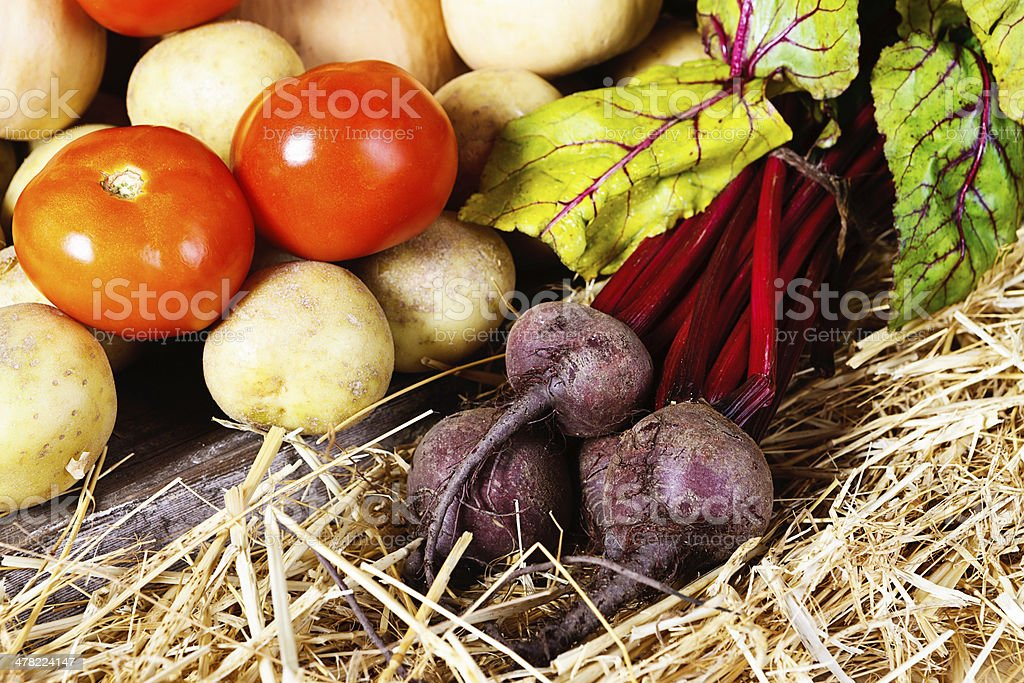 Beets, tomatoes and potatoes on straw royalty-free stock photo