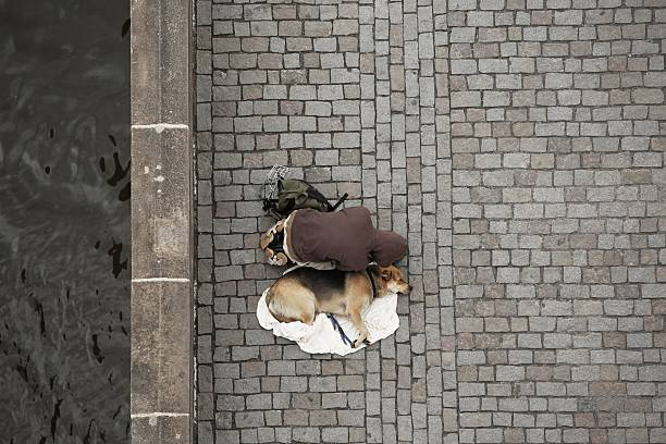 beggar with dog - dog looking at floor path stockfoto's en -beelden