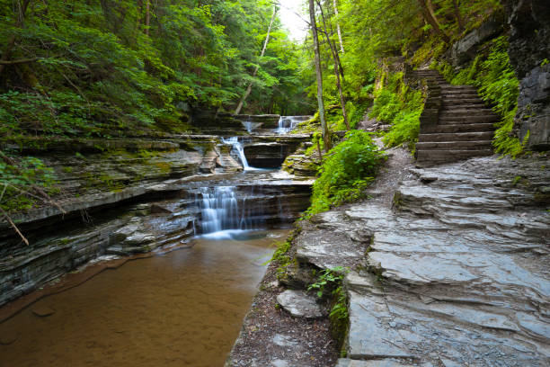 Beguiling Footpath with Cascades A footpath lures the curious away from the gorge trail steps.  Summer within the gorge of Buttermilk Falls Park. michael stephen wills waterfall stock pictures, royalty-free photos & images
