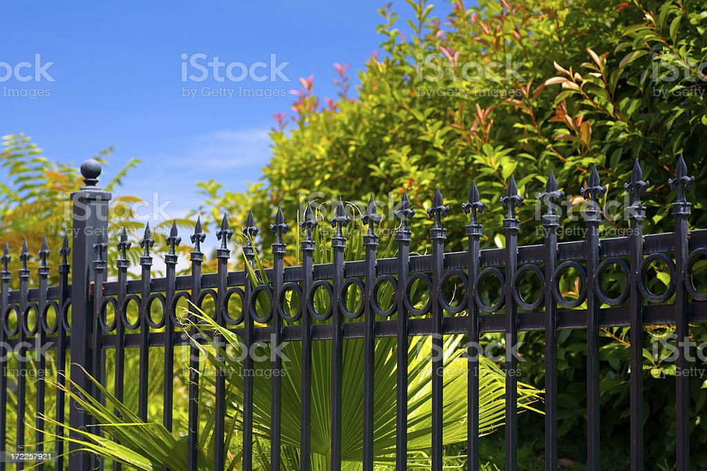 Behind the Fence royalty-free stock photo