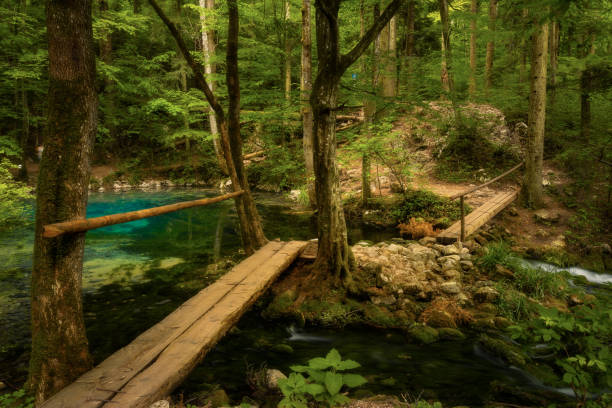 Bei Eye lake, lacul Ochiul Bei in Romania Caras Severin county in Nera Gorges Cheile Nerei with a wooden bridge crossing the lake deep in the forest stock photo